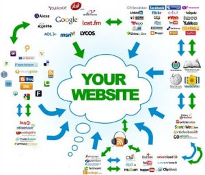 SEO Companies and SEO Services - Types of Backlinks