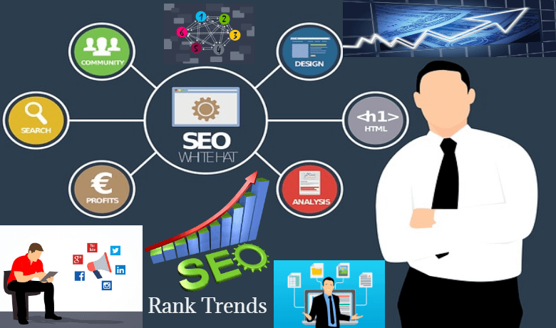 Rank Trends SEO Company