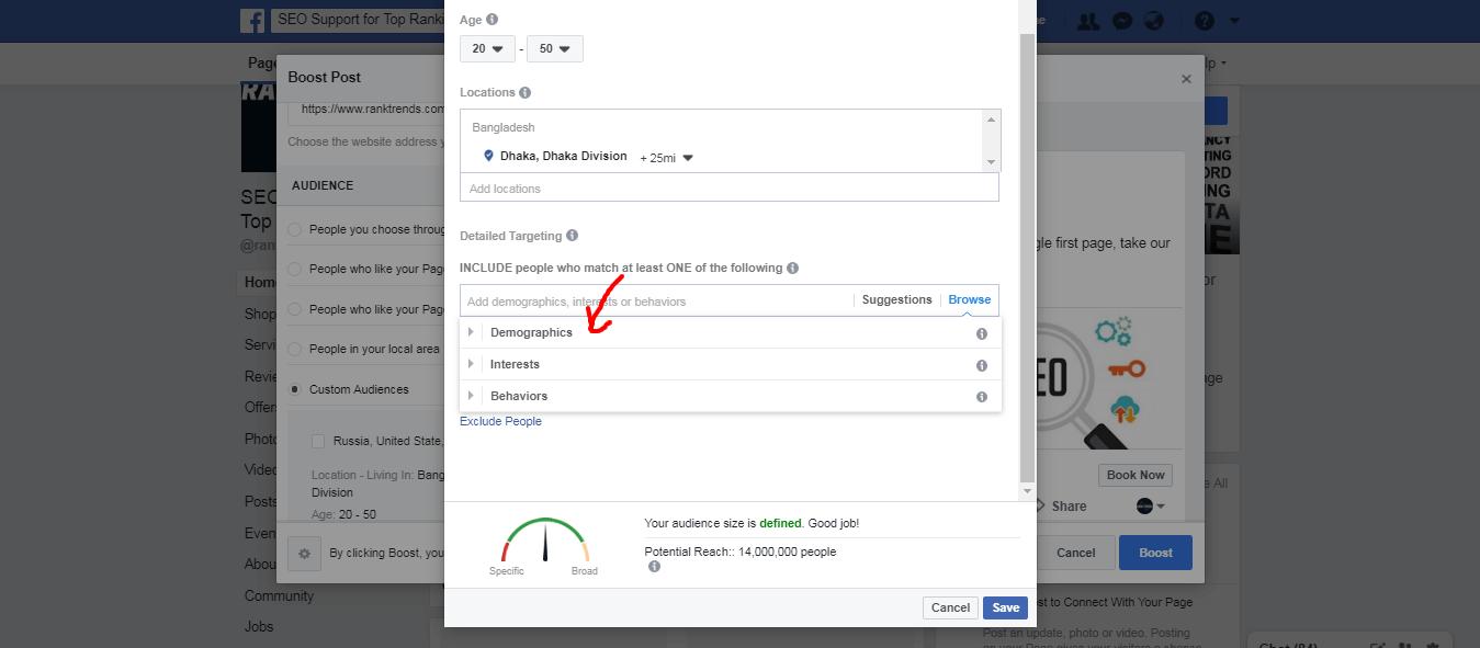 Demographics Setup for Facebook Ads